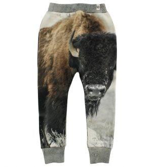 Popupshop Sweatpants - Bison